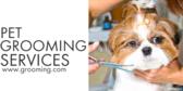 Generic Pet Grooming