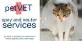 Generic Spay and Neuter
