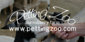 Your Farm Name Petting Zoo