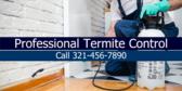 Professional Termite Control Call