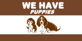 We Have Puppies