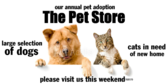 The Pet Store Please Visit Us