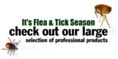 It's Flea & Tick Season Check Out Our Large