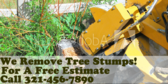 We Remove Tree Stumps! Call