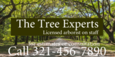 tree removal signs