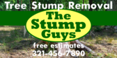 Landscaping Tree Stump Removal