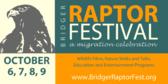 Raptor Festival