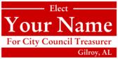 City Council Treasurer
