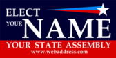 Elect Your Name Your State Name Assembly