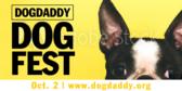 Dog Daddy Dog Fest