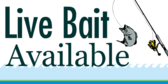 Live Bait Available