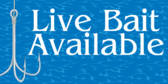 Live Bait Available 1
