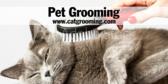 Pet Grooming - Cats