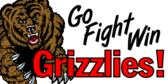 Team Grizzlies Banner