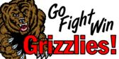 Team Grizzlies Banner