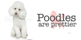 Pet Dog Poodle label