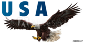 USA Eagle Label