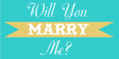 Will You Marry Me Blue Banner