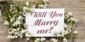 Will You Marry Me Purple Banner