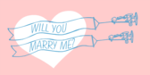 Will You Marry Me Plane Banner