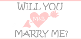 Will You Marry Me Cat Banner