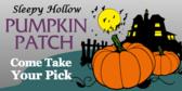 Pumpkin Patch #17