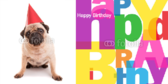 Birthday Dog Banner