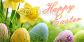 Easter Day Banner