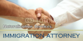 Attorneys (Immigration Law)