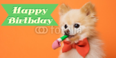 Puppy Love Birthday Banners