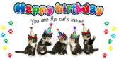 Baby Kitten Birthday Banner