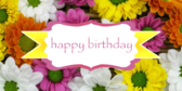 Flowering Flowers Birthday