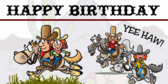 Cowboys and Indians Birthday