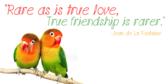 True Friendship Saying