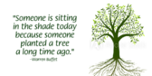 Planted Tree Saying