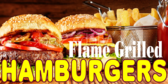 Hamburgers Promotion for Concessionaires