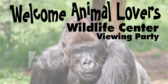 Viewing Animal Channel Party Banner