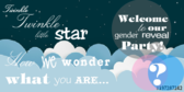 Welcome Gender Reveal Baby Shower Banner