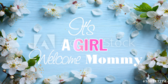 Shabby Chic Baby Girl Shower Banner