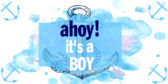 It's a Boy Ahoy Banner