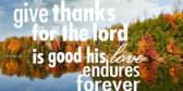 Give Thanks For God's Love Endures Banner