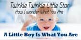 Its a Boy Twinkle Little Star Banner