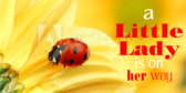 It's a Girl Lady Bug Banner