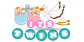 Its Twins Stork Two Babies Banner