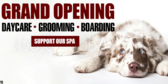 Grand Opening Kennel Banner