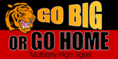 Cheer Go Big Go Home Design