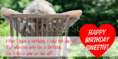 Funny Birthday Quote about Wife
