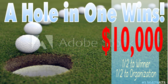 Golf Tee Hole In One