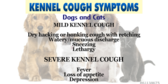 Dog and Cat Cough Signs