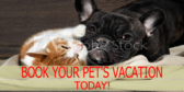 Book Your Pet's Stay